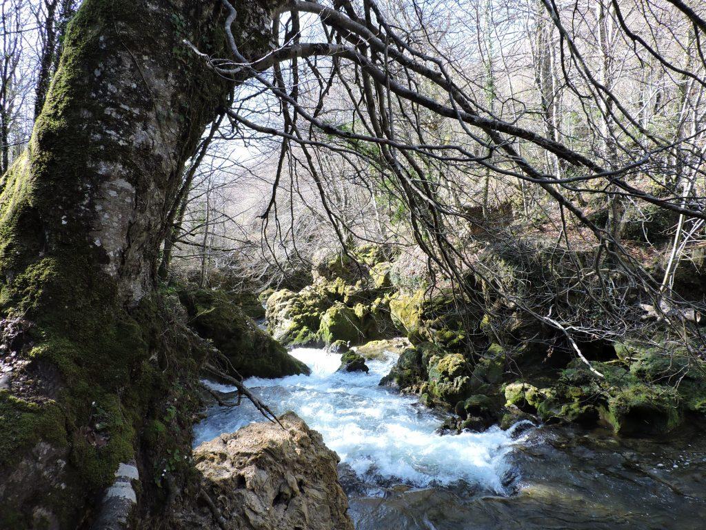 Puente de Mayo Camping El Molino