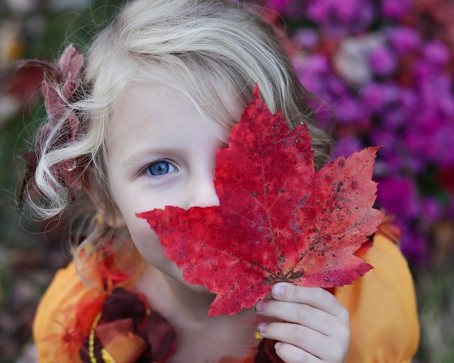 Ecos de otoño en Tierras de Iranzu