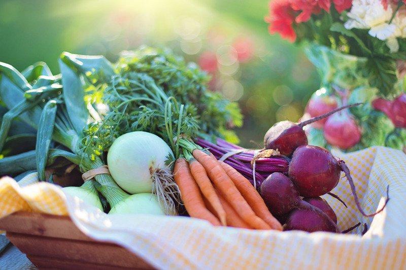 Jornadas de Exaltación y Fiestas de la verdura