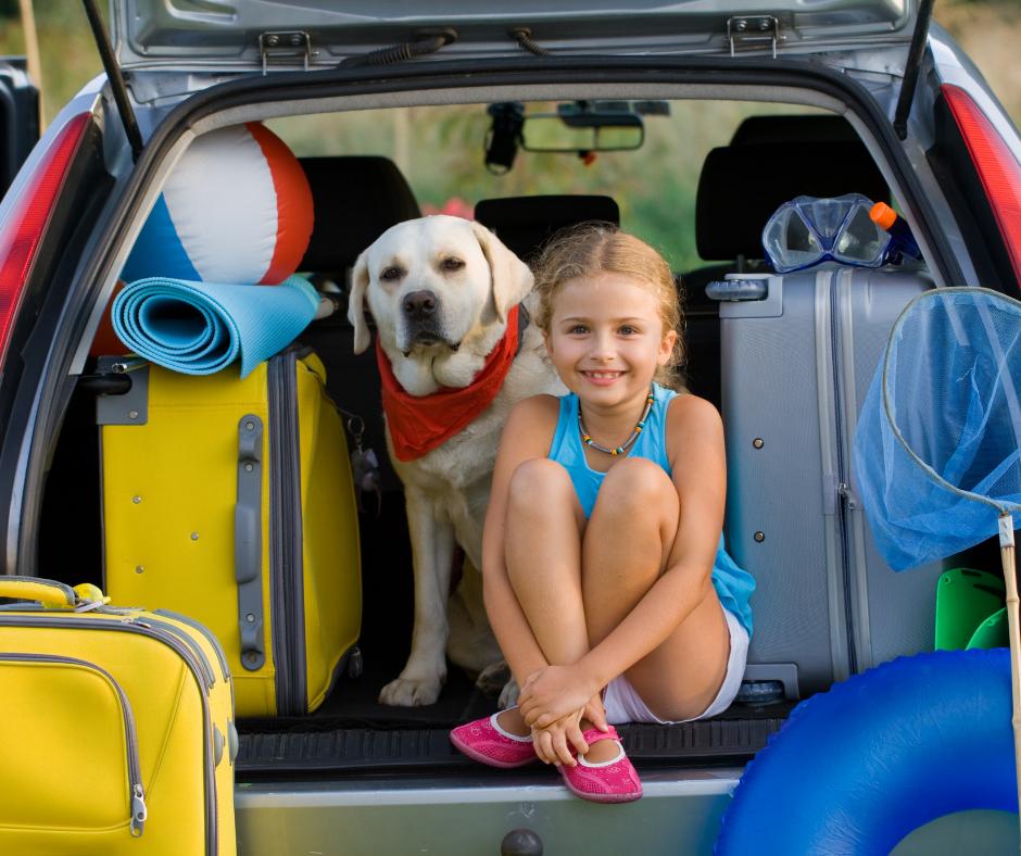 Viajar de camping con vuestro perro es una buenísima idea