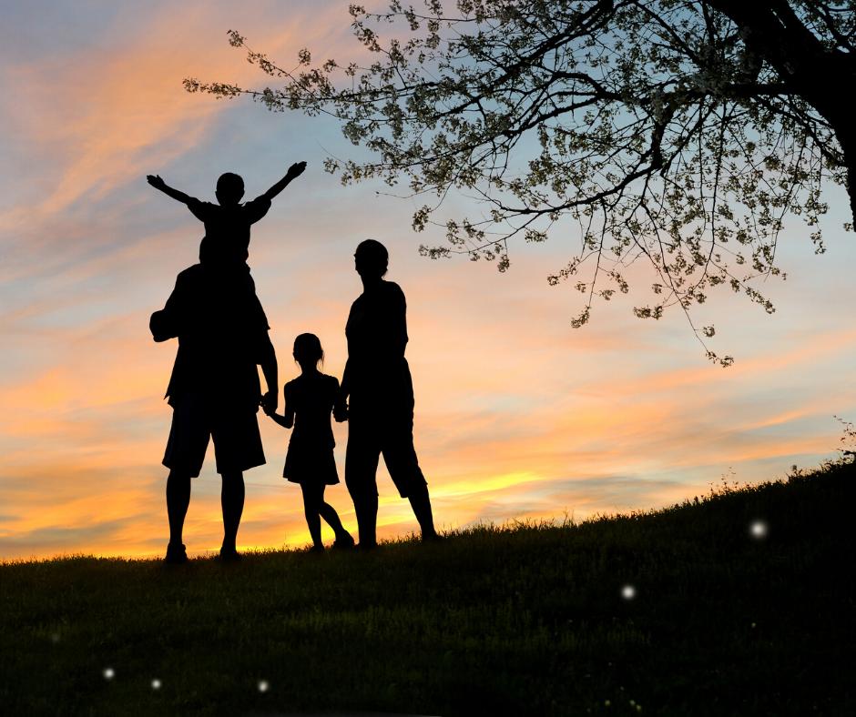 Parques y espacios que no debes perderte en tu visita a Navarra con niños